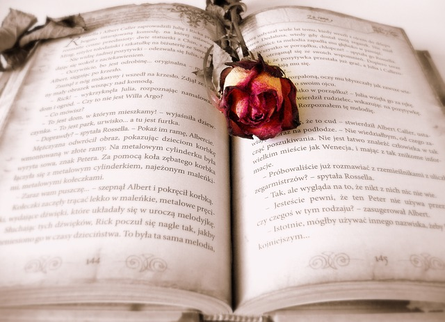 List Of Some Of The Best Romantic Novels To Read Now